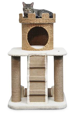 cat castle2